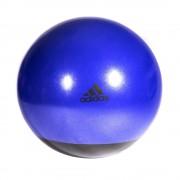 Reebok 65cm Premium gimnasztika labda sötétlila színben