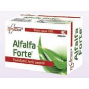 Alfalfa Forte 40 capsule FarmaClass
