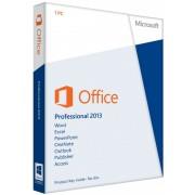 Microsoft Office 2013 Professional   Windows