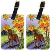 Caroline's Treasures SS8427BT Chesapeake Bay Retriever Luggage Tag(Multicolor)