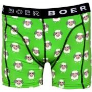 Boer Boer Sheep