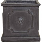 The Pot Co Clayfibre Lion Head Square Planter Available in 5 Sizes