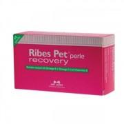 N.B.F. LANES Srl Ribes Pet Recovery 60 Perle [Cani/gatti] (903596765)