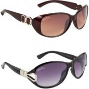BEING ADAM Over-sized Sunglasses(Brown, Violet)