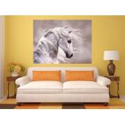 "Tablou grand canvas ""close up grey horse"" - cod Z39"