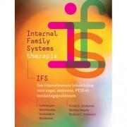 Internal Family Systems-therapie (IFS) - Frank G. Anderson, Martha Sweezy en Richard C. Schwartz