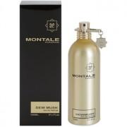 Montale Dewmusk Apă De Parfum 100 Ml