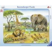 PUZZLE AFRICA SALBATICA, 30 PIESE - RAVENSBURGER (RVSPC06146)