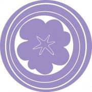 Brewster Hooplah Pañuelos de pared, Púrpura