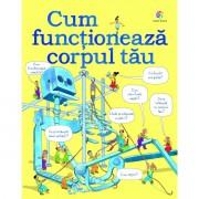 CUM FUNCTIONEAZA CORPUL TAU - CORINT (JUN1237)