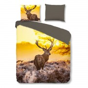 Good Morning Deer in Sun dekbedovertrek