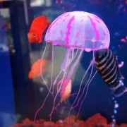 ProductsPro Decoratieve Kwallen voor Aquarium - Divers