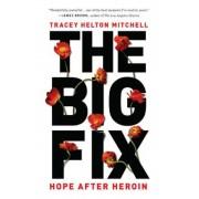 The Big Fix: Hope After Heroin, Paperback