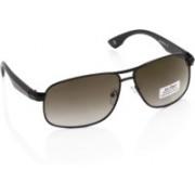 Joe Black Rectangular Sunglasses(Brown, Green)