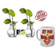 ES WATER MONEY PLANT PAIR With Freebies Mug