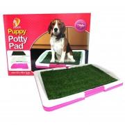 Baño Ecológico Para Perros Y Gatos Grande Puppy Potty Pad