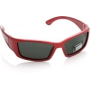 Polaroid Round Sunglasses(For Boys)
