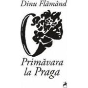 Primavara la Praga - Dinu Flamand