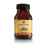 Vitamina B-6 Piridoxina 45 Cápsulas de 500 mg