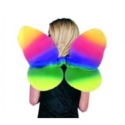 Rg Costumes 65169 Rainbow Wings Costume - Size Child
