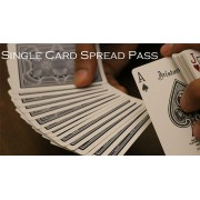 Magic Encarta Presents Single Card Spread Pass by Vivek Singhi v