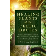 Healing Plants of the Celtic Druids - Ancient Celts in Britain and their Druid healers used plant medicine to treat the mind, body and soul (9781785355547)