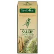 Extract din amenti de salcie 50ml Plantextrakt