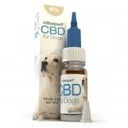 Ulei CBD 4% pt. Caini (400 mg)