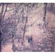 Esben&the Witch - Violet Cries (0744861093923) (1 CD)