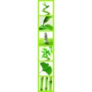 Ideal Décor Ideal decoración DM74518 en la pared 18.5-inch-by-105.5-inch Verde Rayas