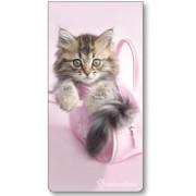 Magnetische boekenlegger: Minnie (kitten, Rachael Hale)