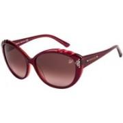 SWAROVSKI Oval Sunglasses(Red)