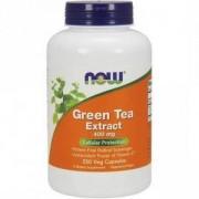 Екстракт от Зелен чай 400 мг. - Green Tea Extract - 250 капсули - NOW FOODS, NF4706