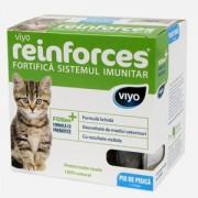 Viyo Reinforces Cat Kitten 7x30 ml