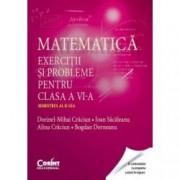 Matematica. Exercitii si probleme pentru clasa a VI-a. Semestrul al II-lea