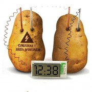 ELECTROPRIME® Potato/Fruit Clock Green Science Experiment Great Educational Toy Kids Lab