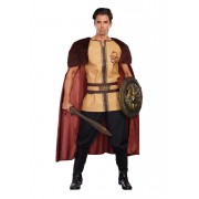 Dreamguy Voracious Viking Costume 10223