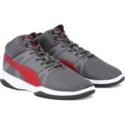 Puma Puma Rebound Street BSK IDP Basketball Shoes For Men(Grey)