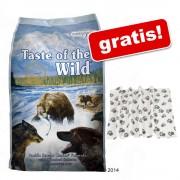 13 kg Taste of the Wild + pătură Pawty gratis! - High Prairie Puppy