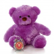 2.5 Feet Fat and Huge Purple Teddy Bear