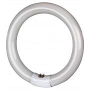 Mo-El Ersatzröhre für Insectivoro (Professional-Serie) - UV-A, 32 Watt