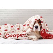 """Print Express t/a Printerpix From £8.99 (from Printerpix) for one 30"""" x 40"""" personalised dog 81% blanket or £17.99 for two, choose your size and quantity and save up to 81%"""