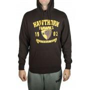 AFL Men's SHD Hoody Hawthorn Hawks