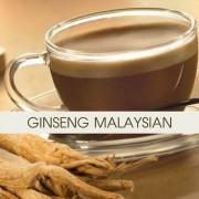 Officine Gastronomiche Caffè al Ginseng per Bar Malaysian 2 buste da 500 gr