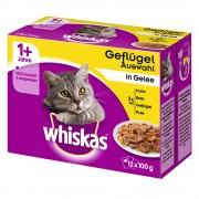 48x85g Whiskas saquetas Casserole Seleção de clássicos em gelatina