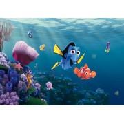 Fototapeta do deskej izby FTDN 5061 Hľadá sa Nemo, vliesová , 360x270 cm - 4 dielna