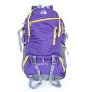 Agatti The North Face 32 L Backpack(Purple)