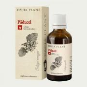 DACIA PLANT TINCTURA PADUCEL