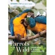 Parrots of the Wild: A Natural History of the World's Most Captivating Birds, Hardcover