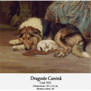Dragoste canina (kit goblen)